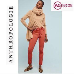 NWT AG Abbey Sateen High Rise Skinny Jeans Sz. 28